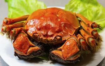 入秋吃螃蟹