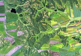 ?地绵万里尽春耕,卫星视角下的美丽田野